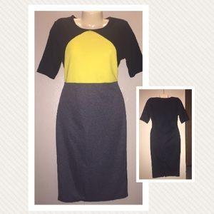 Tricolor Colorblock Dress 👗